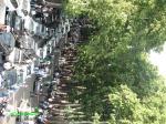 حامیان میرحسین موسوی - خیابان ولیعصر از پارکوی روبه جنوب